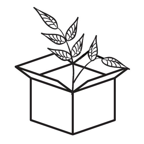 Embalaje personalizado y seguro