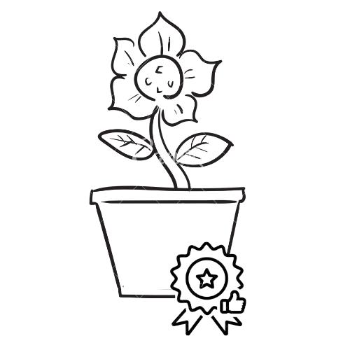Plantas de calidad